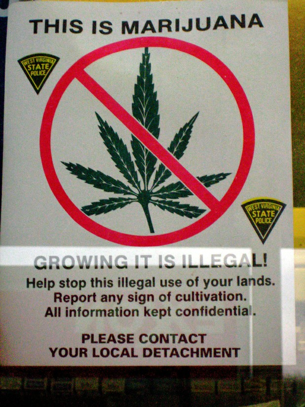Michigan Asks Public To Be Vigilant of Marijuana Plots