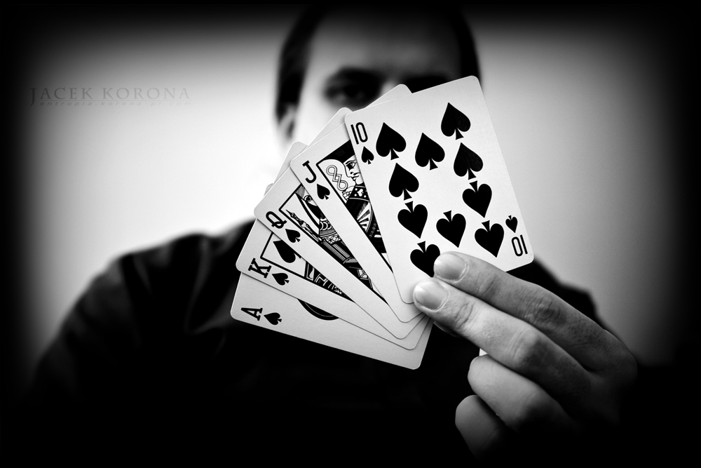 john gambling dehumidifier